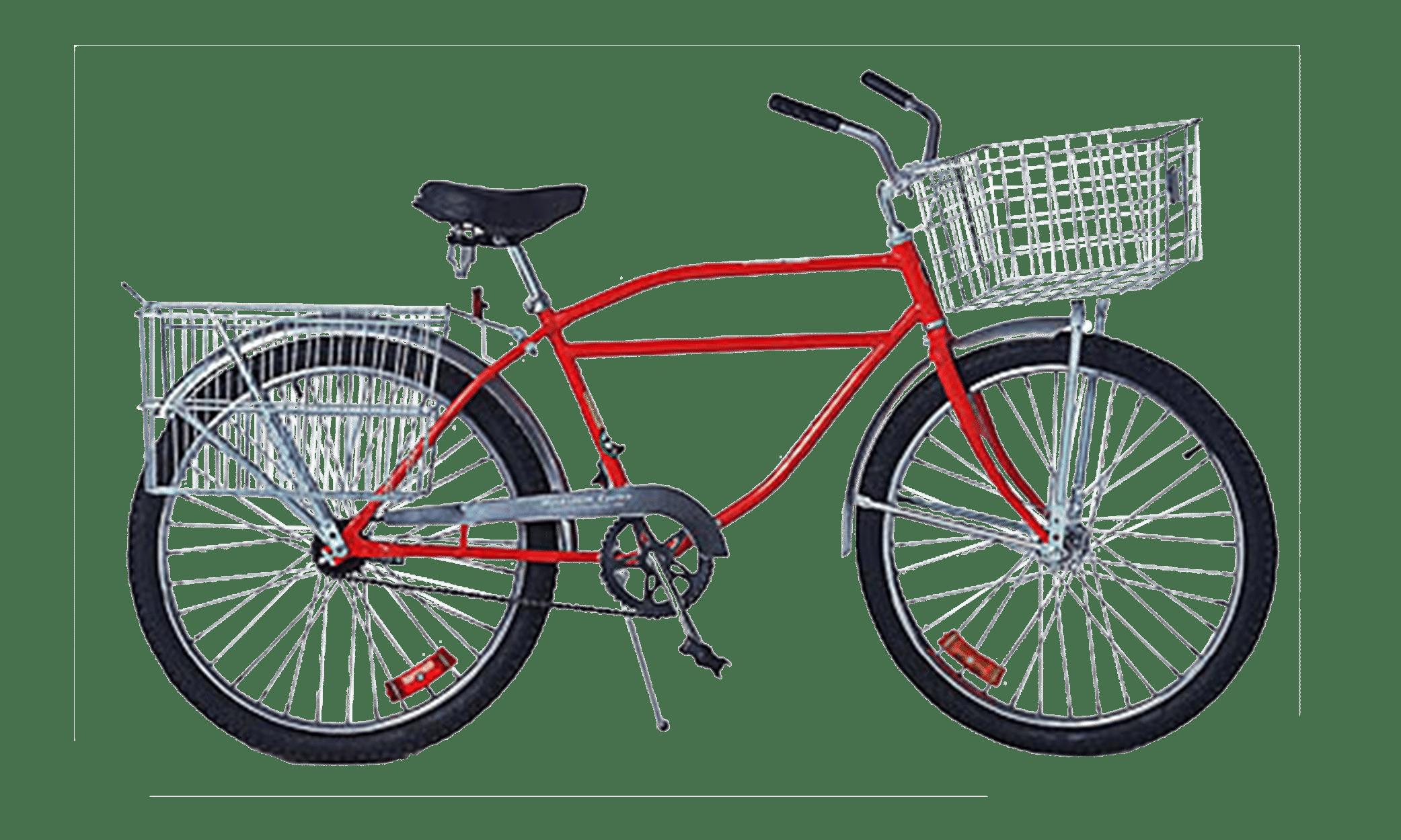 Supersized Newsboy Zize Bikes