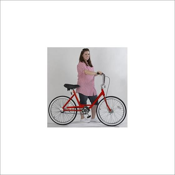 ZizeBikes - Supersized Comfort Bike - image4