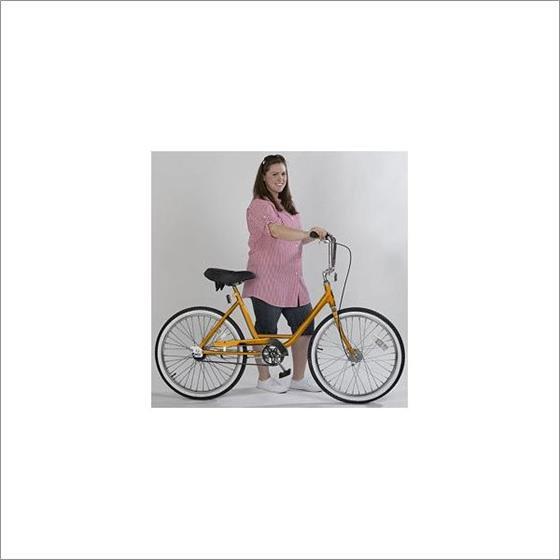 ZizeBikes - Supersized Comfort Bike - image5