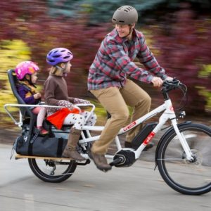plus size bikes
